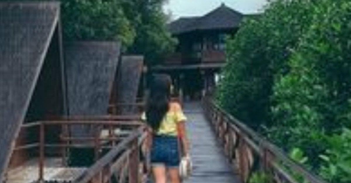 Bukan Gunung dan Pantai, 5 Hutan Mangrove Cantik Ini Wajib Banget Dikunjungi! - PlayboyID
